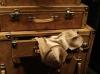Dresser with bustier top
